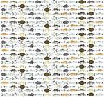 Florida Inshore Fishes