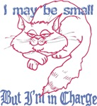 Small but In Charge