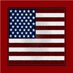 USA Flag Style 2