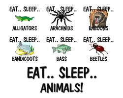 Eat Sleep Animals