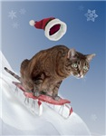 Sledding Cat Christmas Cards
