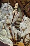 CATS WHO SPUN