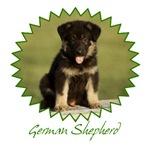 German Shepherd Puppy shirts