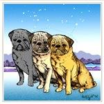 Three Pugs Under The Stars
