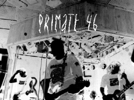 Primate 46 Store