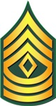 Army - First Sergeant E-8 Traditional