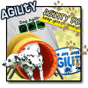 Dog Agility Apparel
