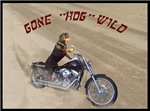 Rottweiler on Motorcycle women's clothing