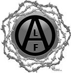 ALF 02
