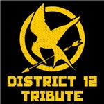 District 12 Tribute