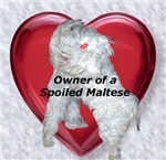 Owner of a spoiled Maltese