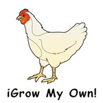 iGrow Chicken