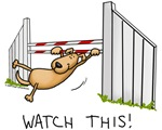 Watch This! Dog