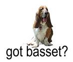 got basset? tri-color