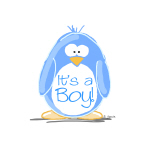 It is a Boy Penguin
