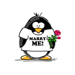 Marry Me Penguin with Rose