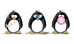 Hear, See, Speak No Evil Penguin Trio