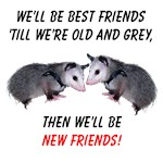 Old New Possum Friends