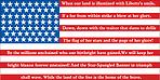 USA flag land of the brave,home of the free