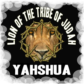 Yahshua Lion
