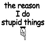 the reason I do stupid things