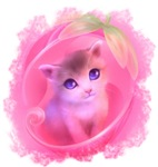 Adorable Pink Kitten