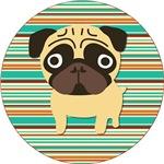 Cute Fawn Pug on Stripes