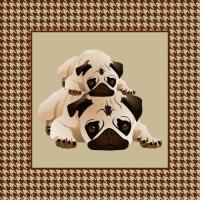 Pugs on Brown Herringbone