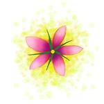 Flower Motif 01
