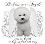 Bichons Are Angels