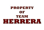 Property of team Herrera