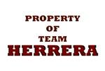 Property of team Herrera