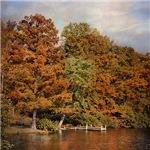 Autumn's Edge
