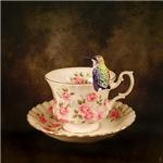 Tea Time With a Hummingbird