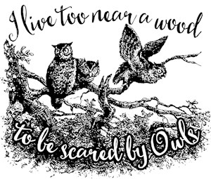 I Live Too Near A Wood To Be Scared By Owls