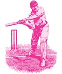 Pink Cricket Pitch T-shirts