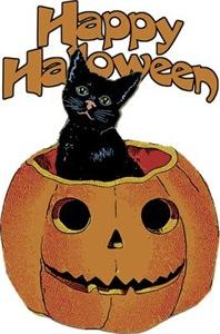 Vintage Halloween Cat In Pumpkin