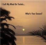 I Left My Mind on Tortola...