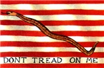 First Navy Jack