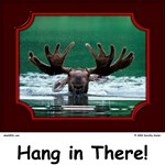 Hang in There! Moose Collection
