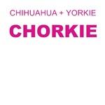 Chorkies