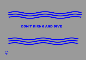 HUMOR/DO NOT DIRNK & DIVE