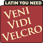 Latin You Need