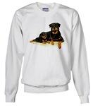 Men's Sweatshirts / Outerwear