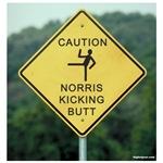 Caution Norris Kicking Butt
