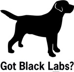 Got Black Labs II