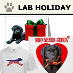 Labrador Retriever Holidays