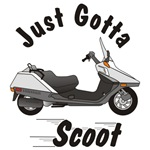Just Gotta Scoot Helix
