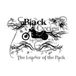 Black Cycles