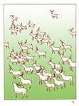 Reindeer Herd Green Cards
